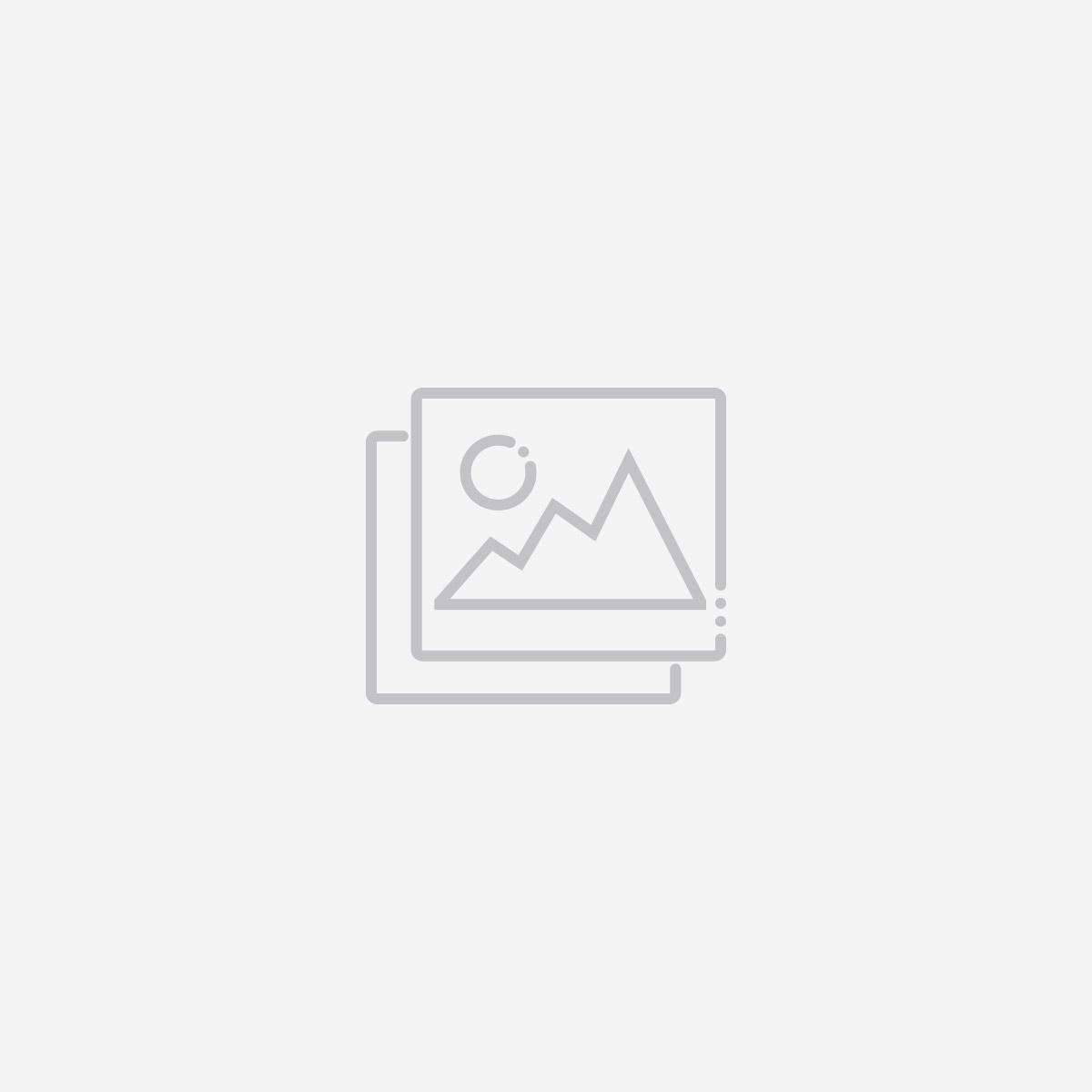 Executive Management | Landis+Gyr