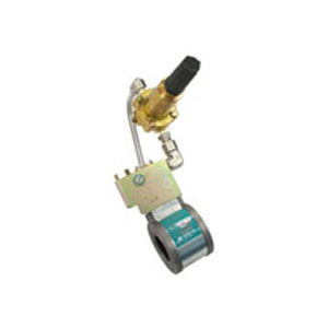 Landis+Gyr Axial Flow Valve regulator